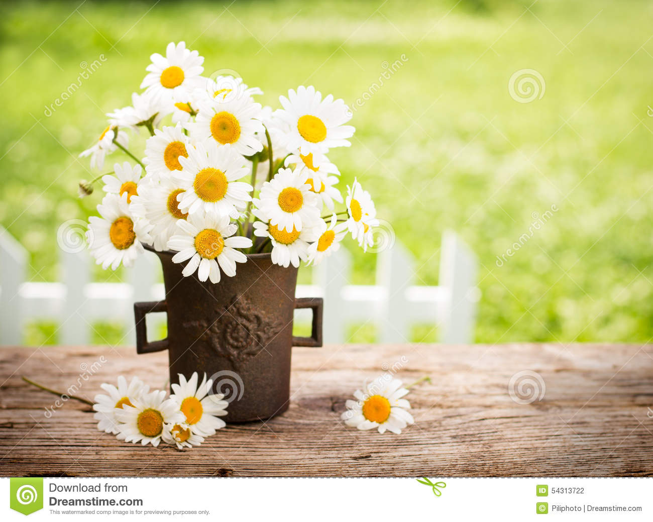 Bouquet Of Daisy Flowers Stock Photo 54313722 Megapixl