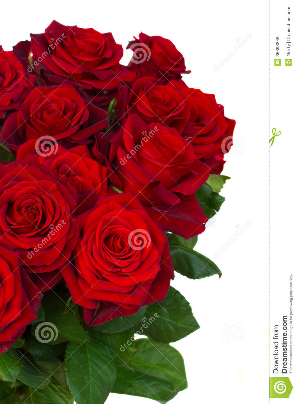 Bouquet Of Dark Red Roses In Vase Close Up Royalty Free ...