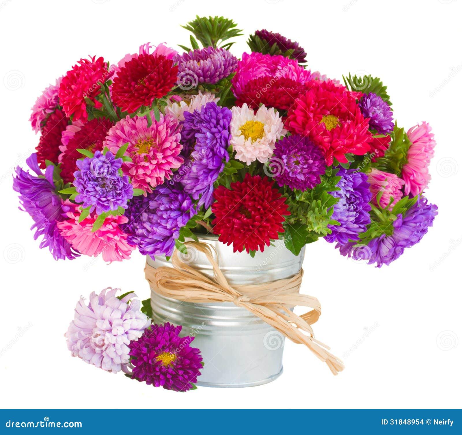Инфо и фото цветы в Японии  MIUKI MIKADO  Виртуальная