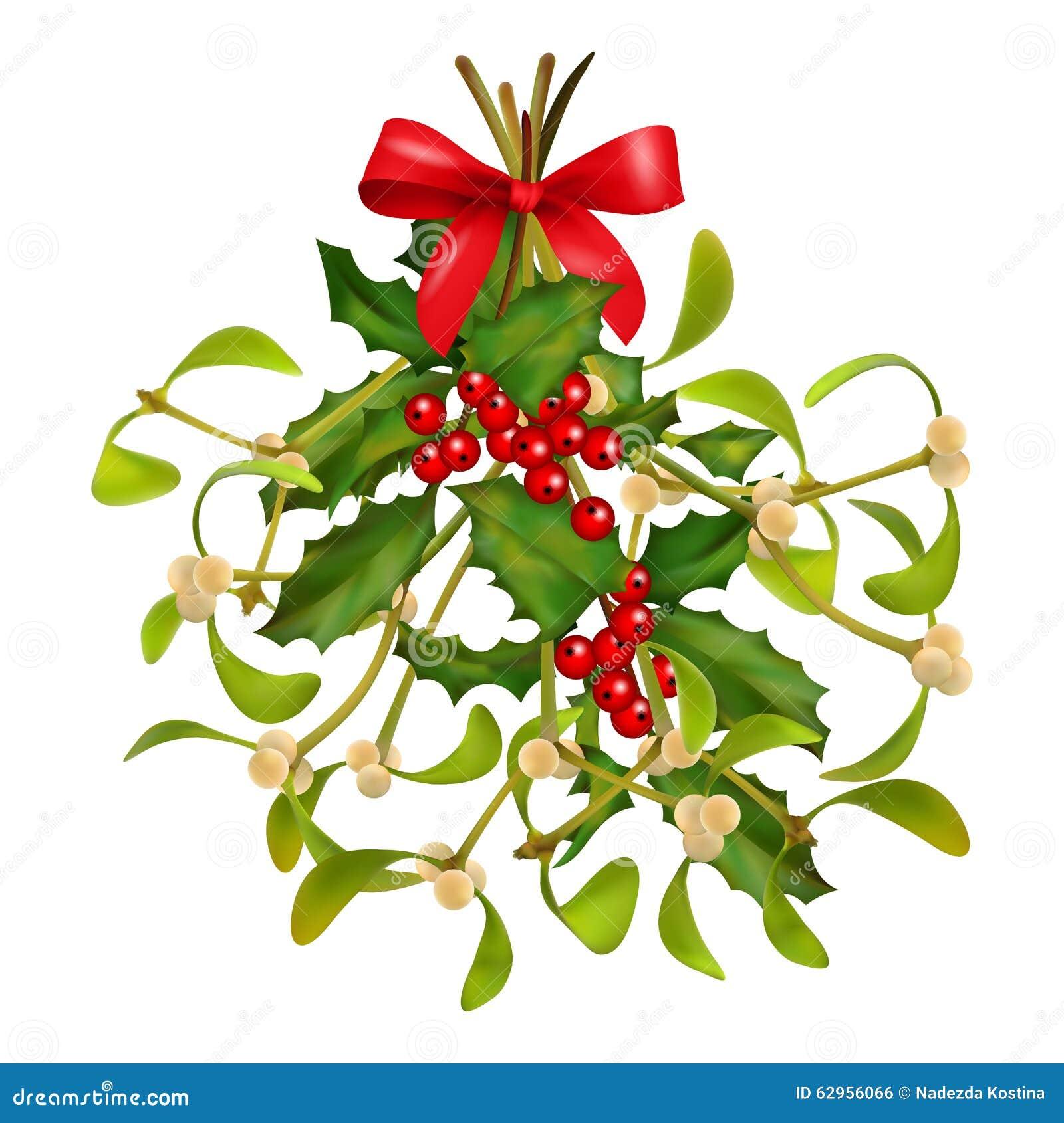 Bouquet De Noel Avec Du Houx bouquet de gui et de houx de noël illustration de vecteur
