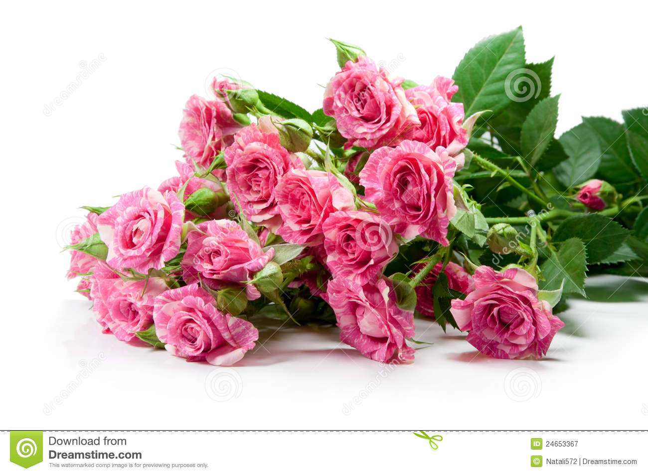 Bouquet de la couleur rose douce des roses image stock for Bouquet de rose
