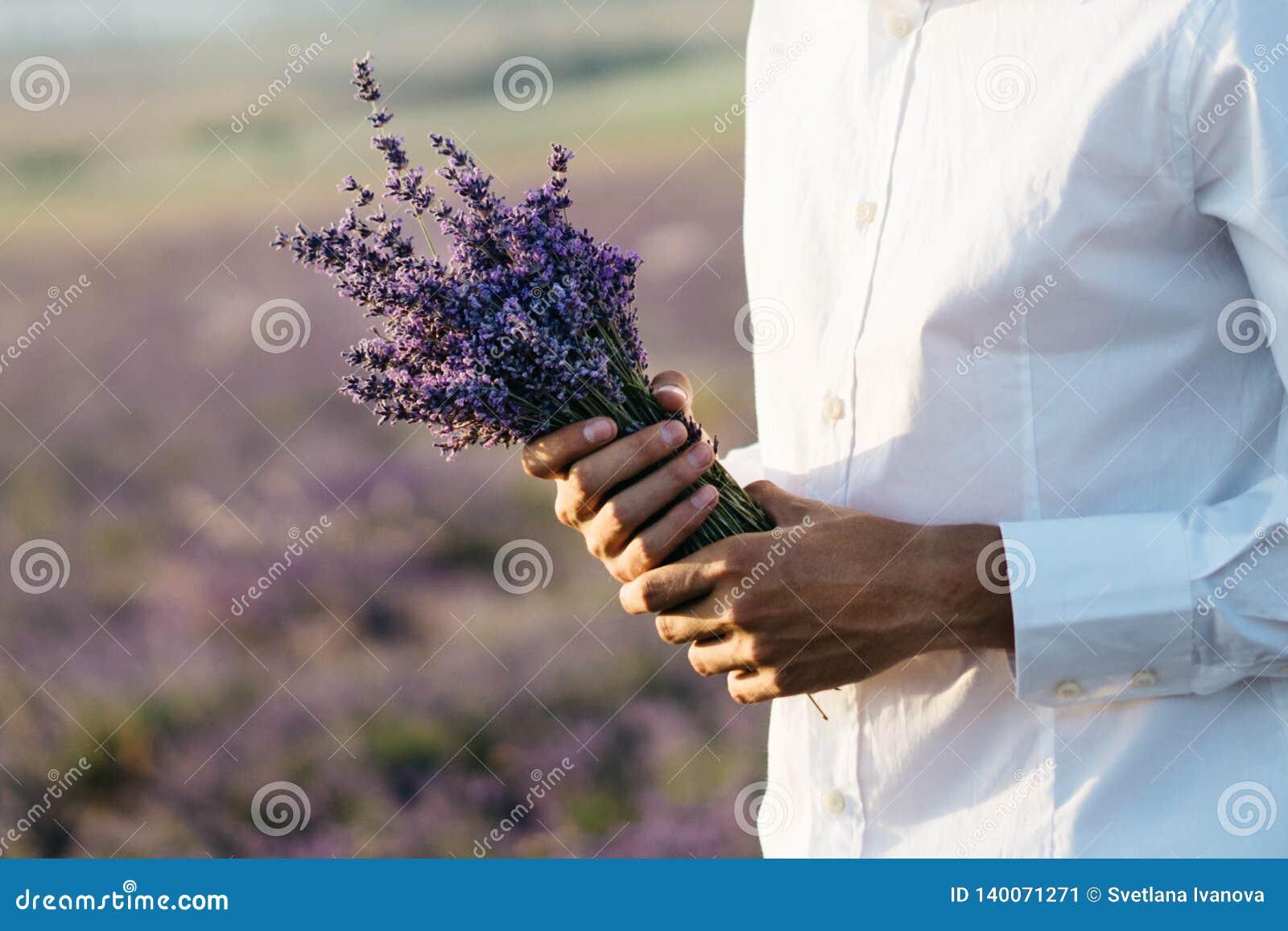 Bouquet de lavande dans les mains d un homme dans la chemise blanche Proue d étoile bleue avec la bande bleue (enveloppe de cadea