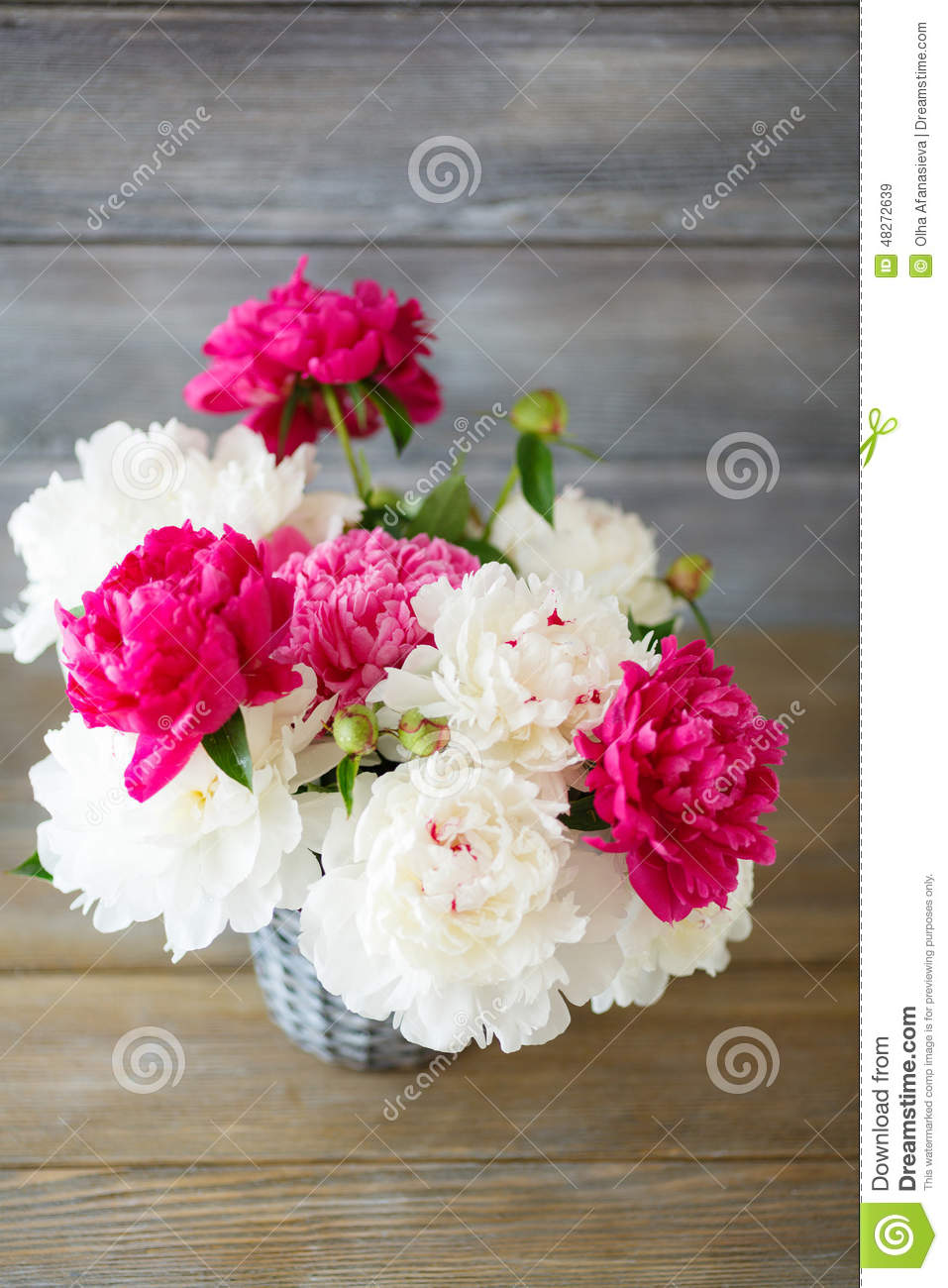 bouquet de pivoines dans le vase photo stock image 48272639. Black Bedroom Furniture Sets. Home Design Ideas