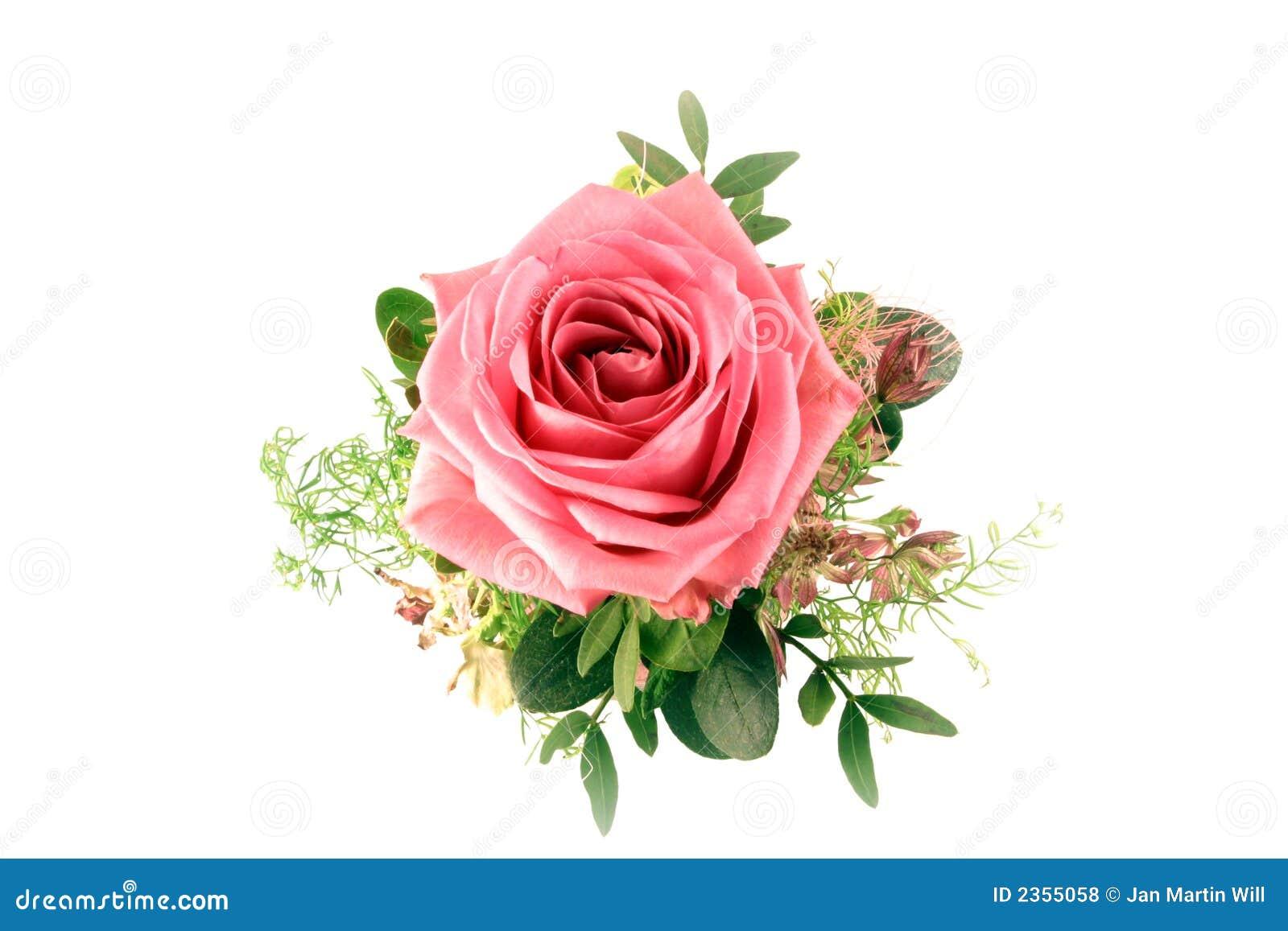 bouquet de rose photos libres de droits image 2355058. Black Bedroom Furniture Sets. Home Design Ideas