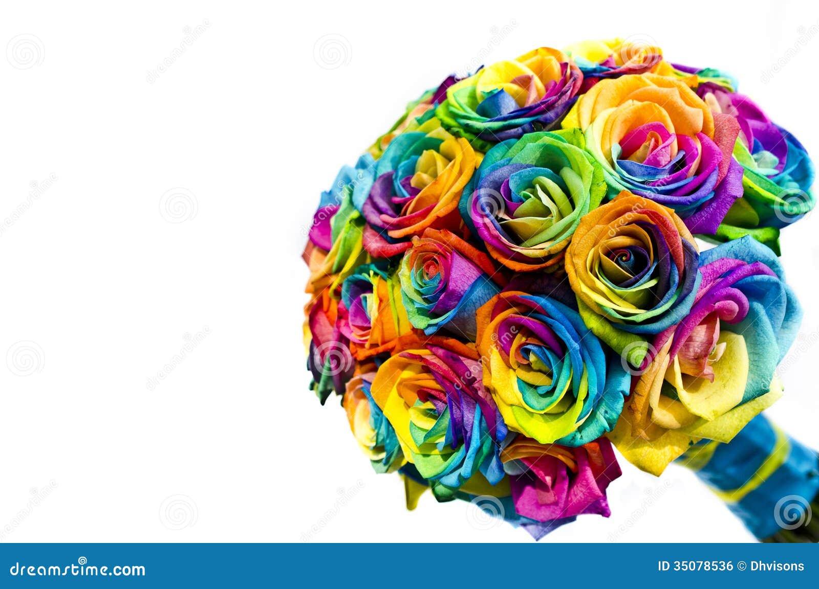 Rose Multicolore Prix Sg Handball