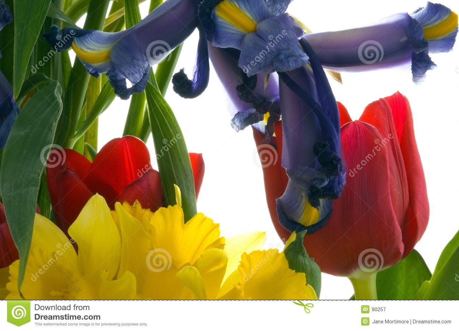 Bouquet de source