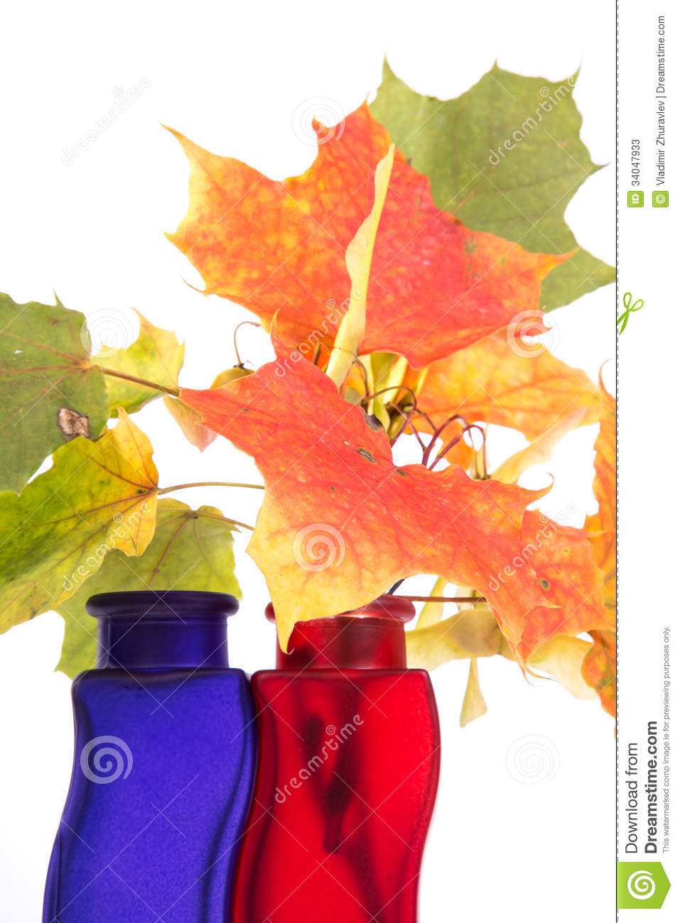 bouquet des feuilles d 39 automne dans le vase color lumineux photos stock image 34047933. Black Bedroom Furniture Sets. Home Design Ideas