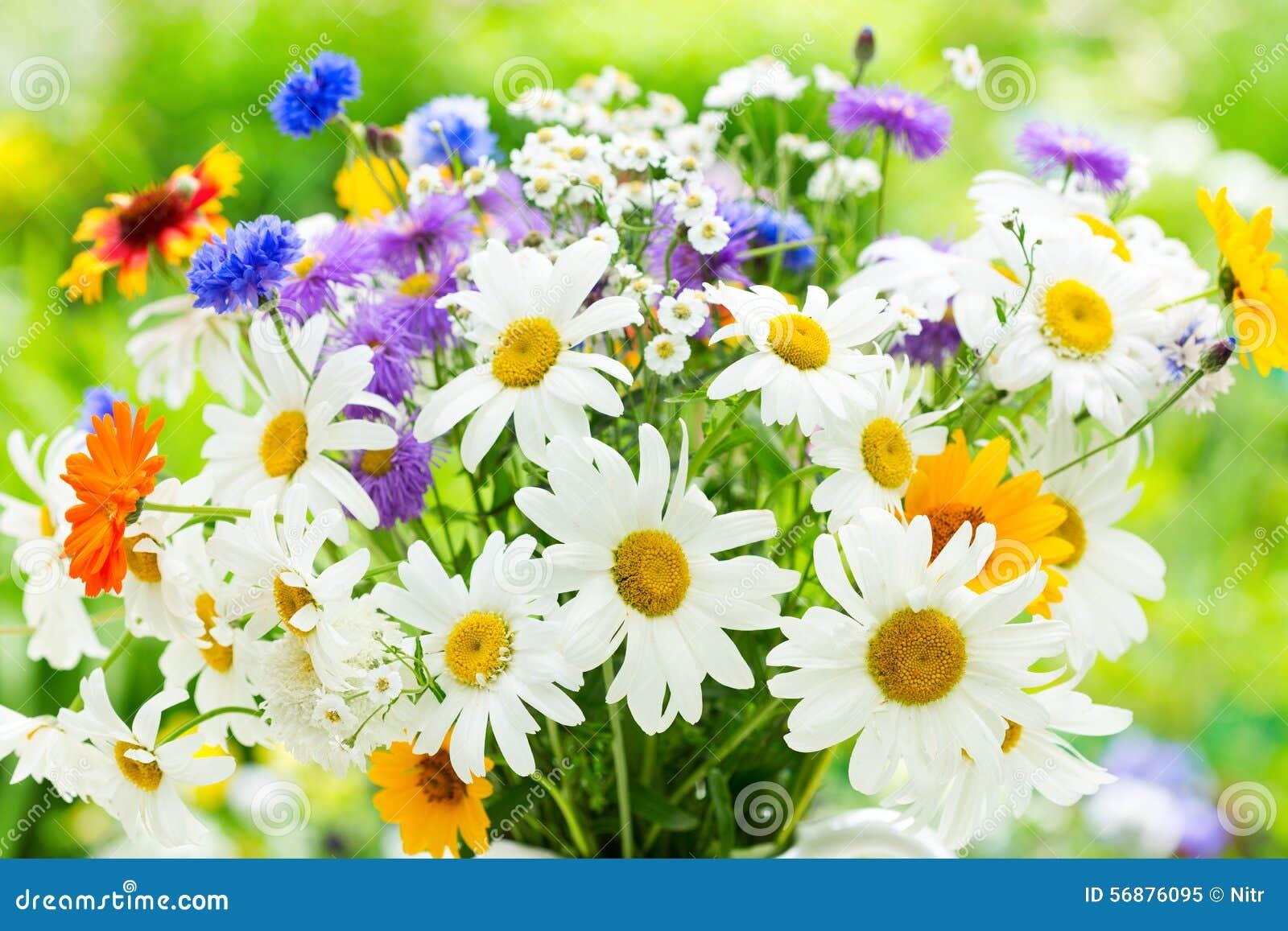 Bouquet Des Fleurs D 39 T Image Stock Image Du Fleur 56876095