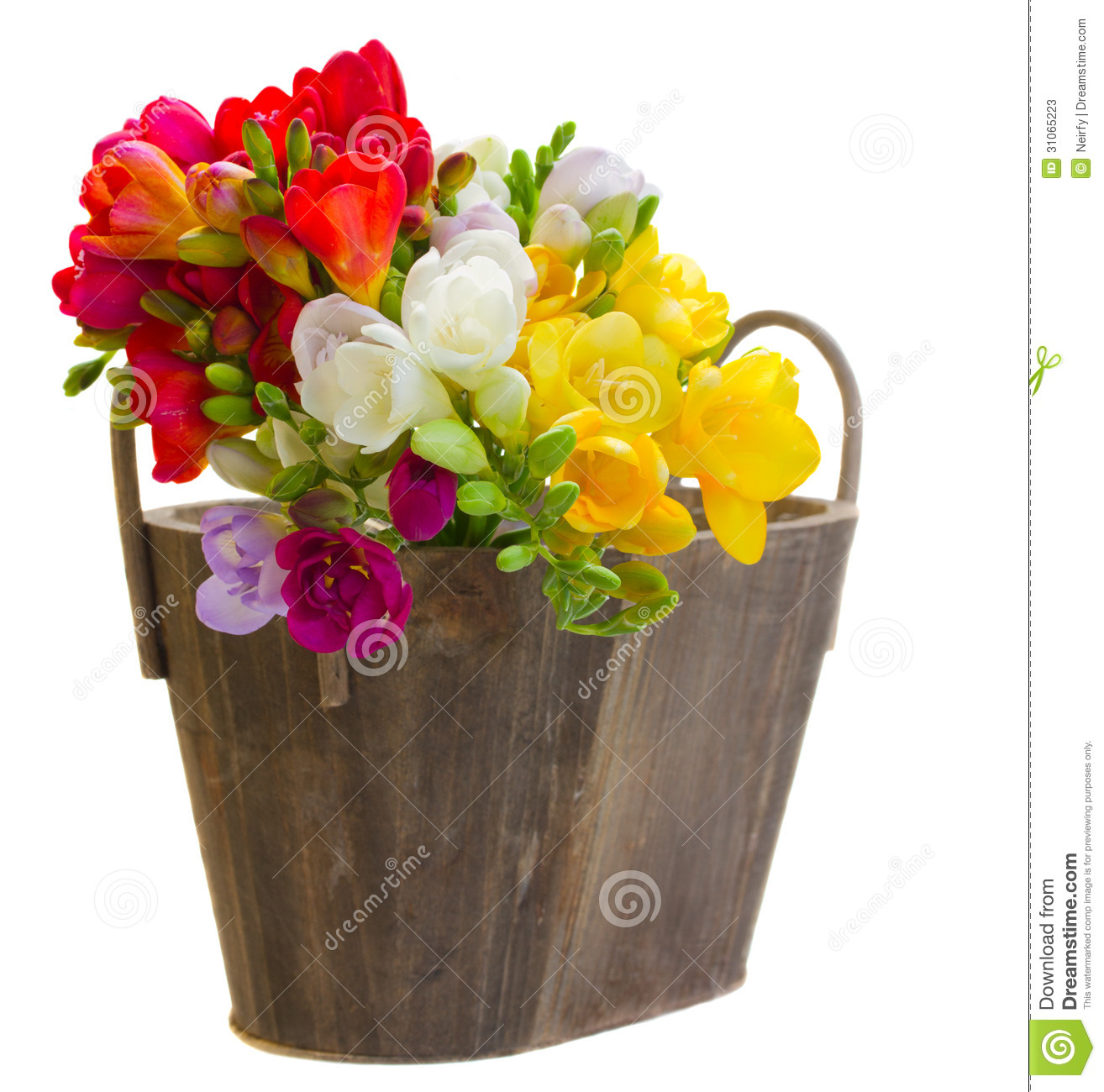 bouquet des fleurs de freesias dans le pot en bois image stock image du nature jour 31065223. Black Bedroom Furniture Sets. Home Design Ideas
