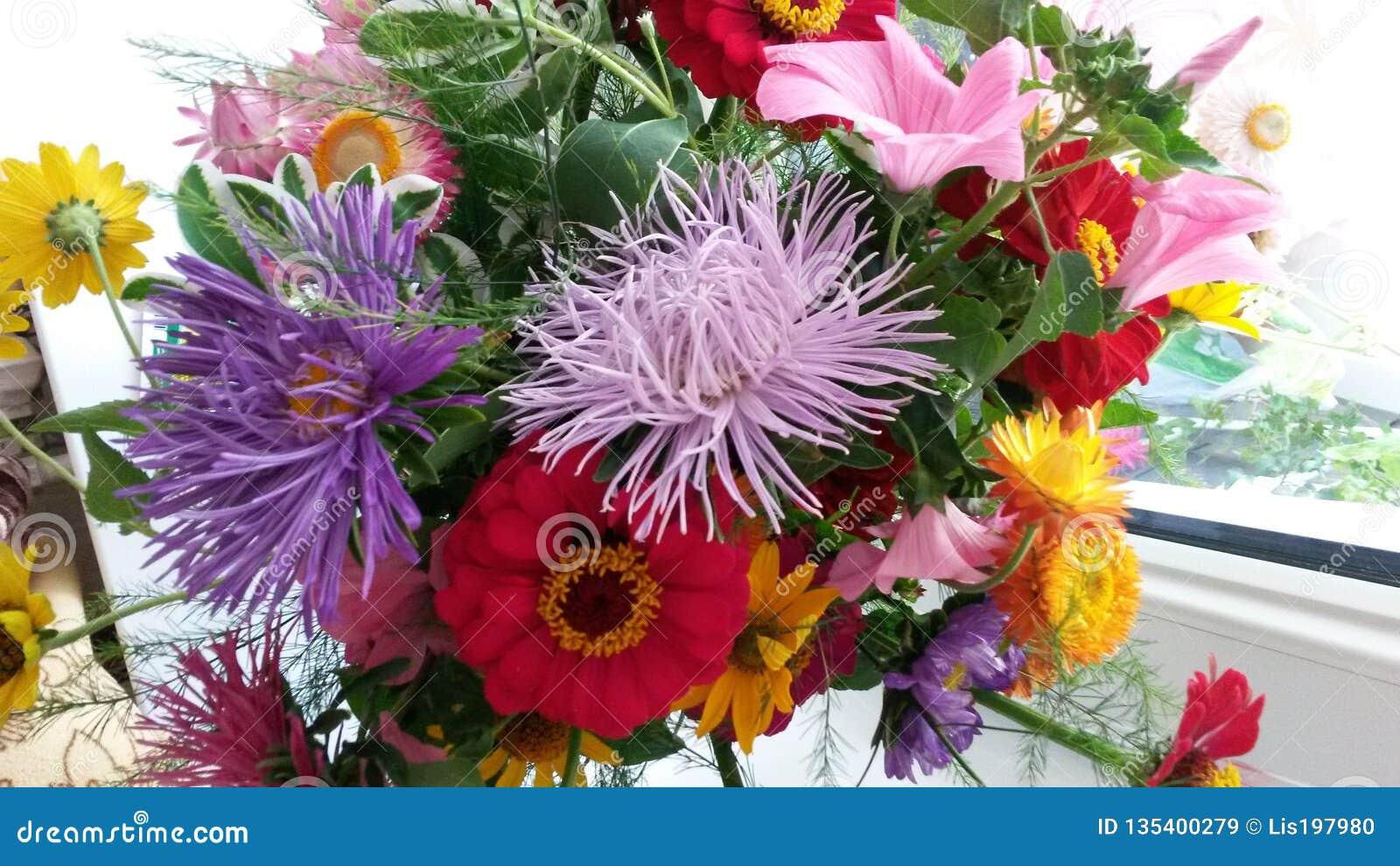 Bouquet Des Fleurs De Jardin Image stock - Image du ...