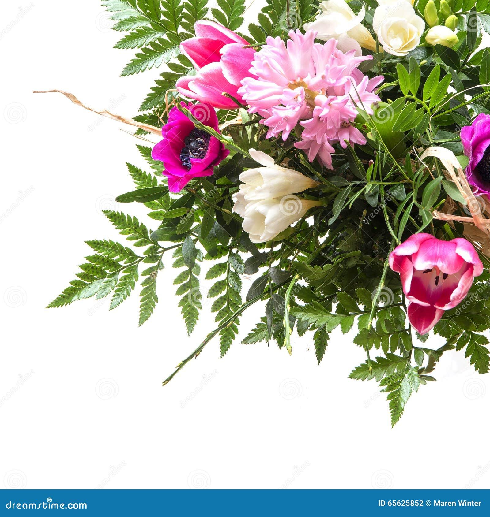 Bouquet des fleurs de ressort d isolement sur le blanc, fond faisant le coin