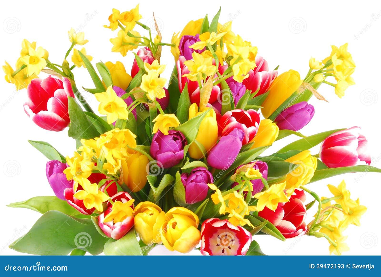 bouquet des fleurs de tulipe et de jonquilles photo stock - image