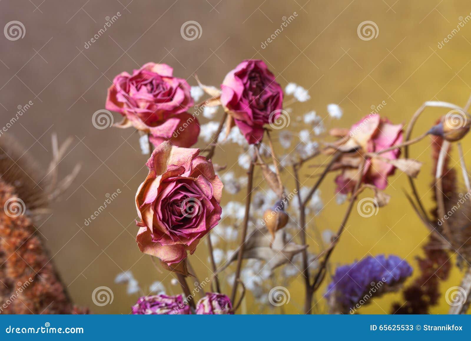 Bouquet des fleurs sèches sur le fond de toile de jute Foyer sélectif