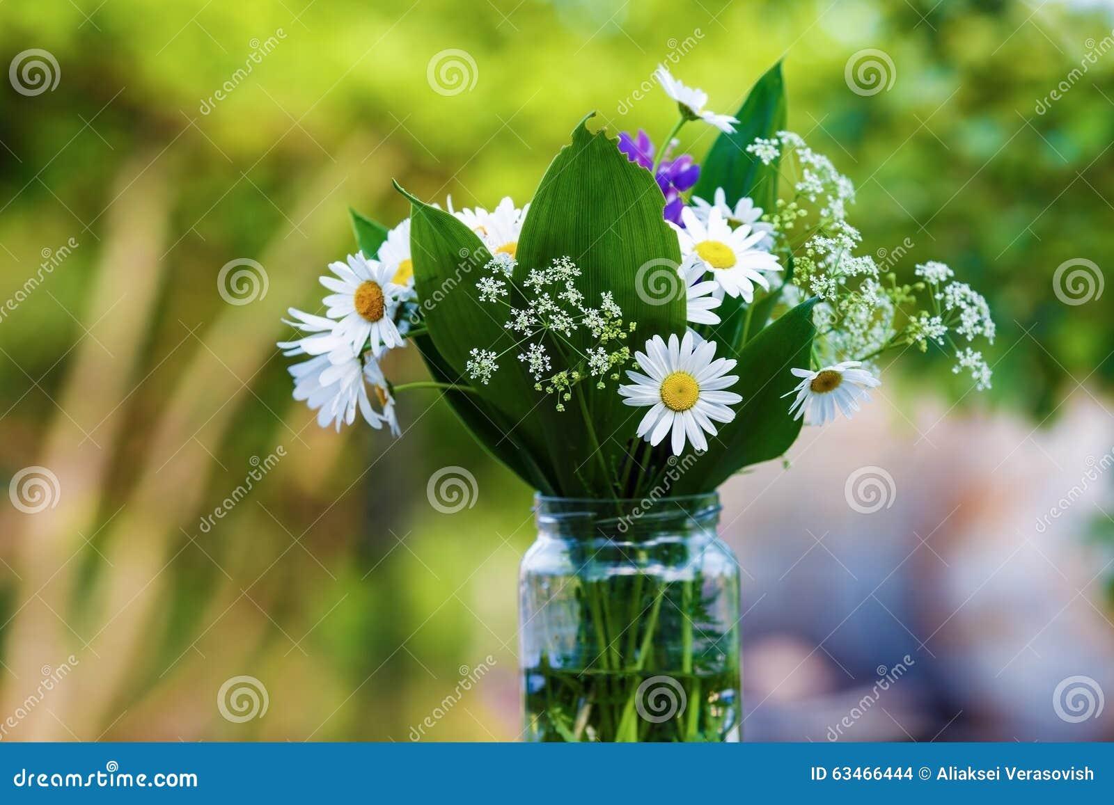 Bouquet des fleurs sauvages photo stock image du normal nature 63466444 - Bouquet de fleurs sauvages ...