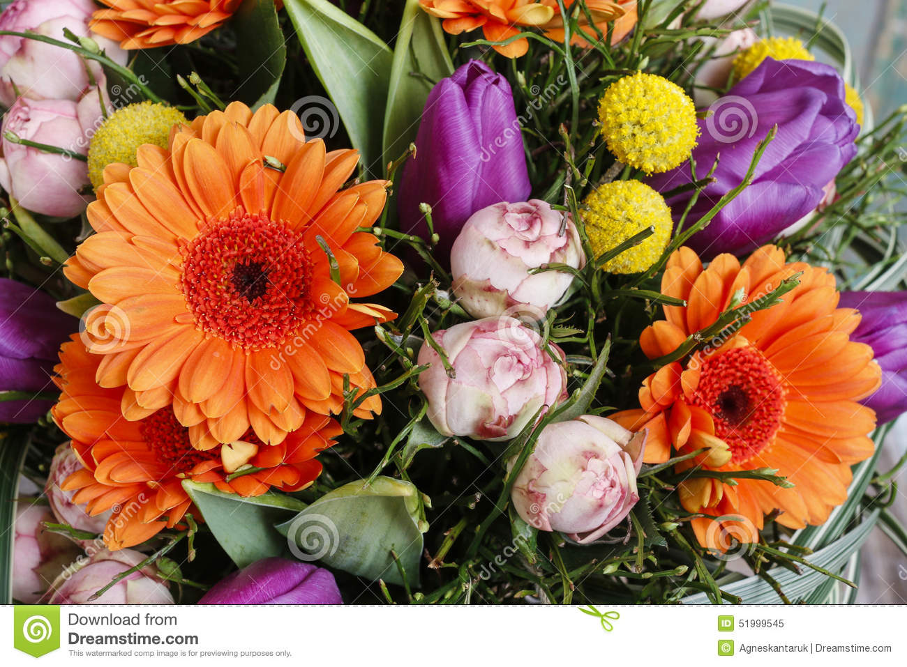 bouquet des marguerites oranges de gerbera des tulipes violettes et des roses roses image stock. Black Bedroom Furniture Sets. Home Design Ideas