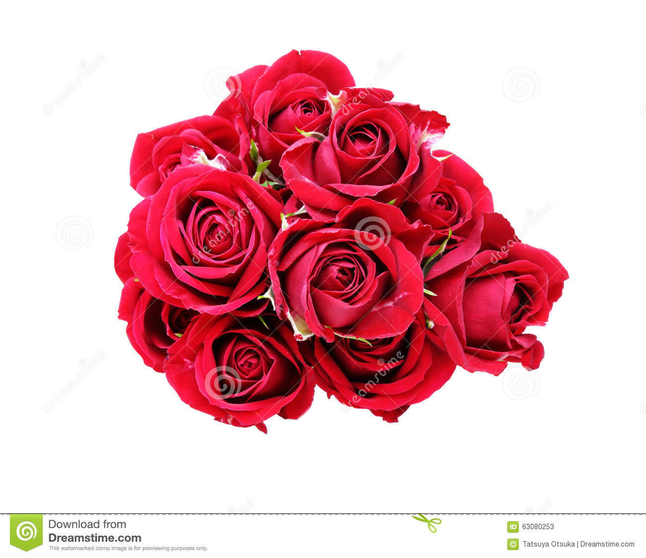 Download Bouquet des roses image stock. Image du rouge, blanc - 63080253