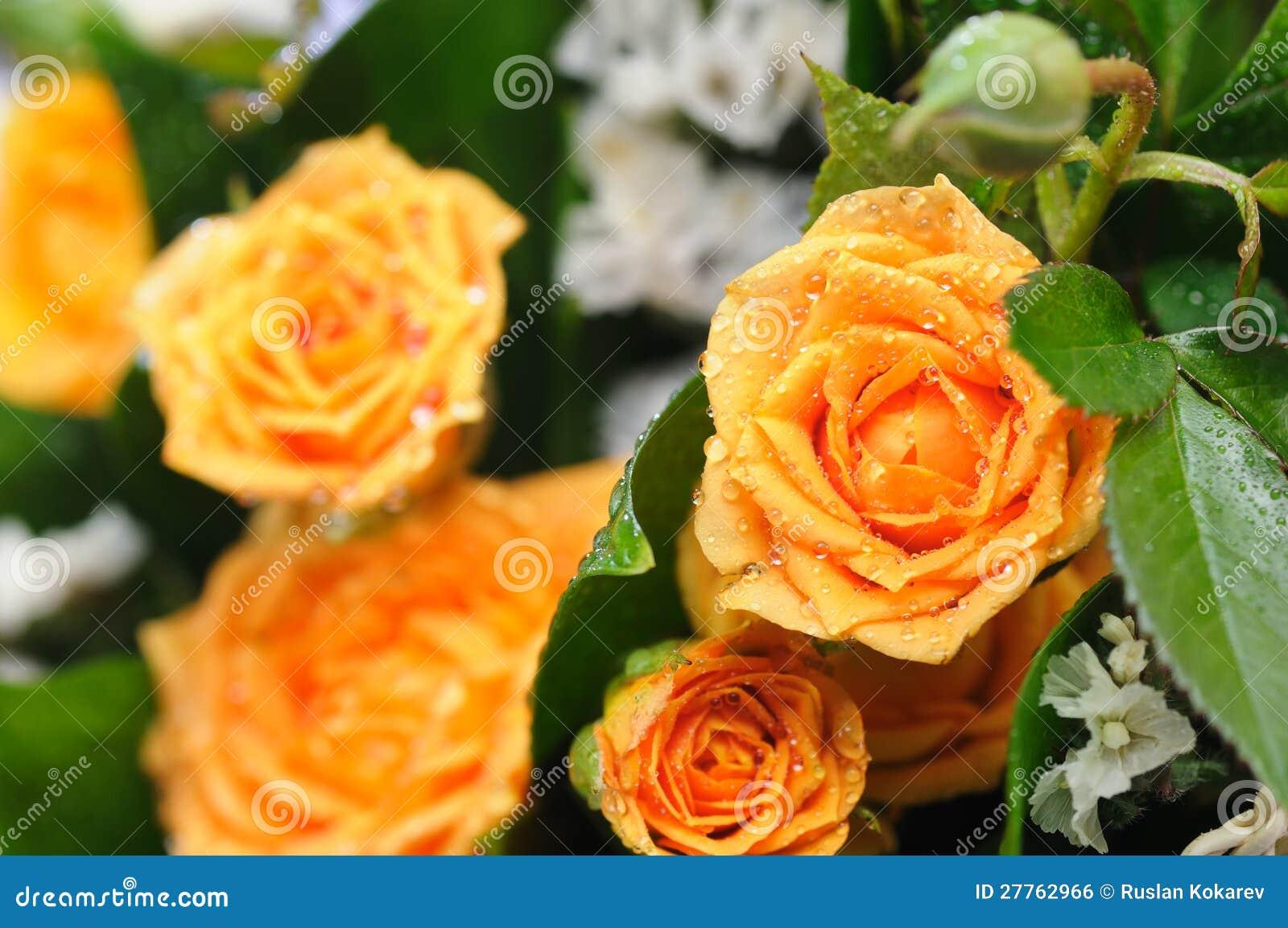 Bouquet des roses jaunes.