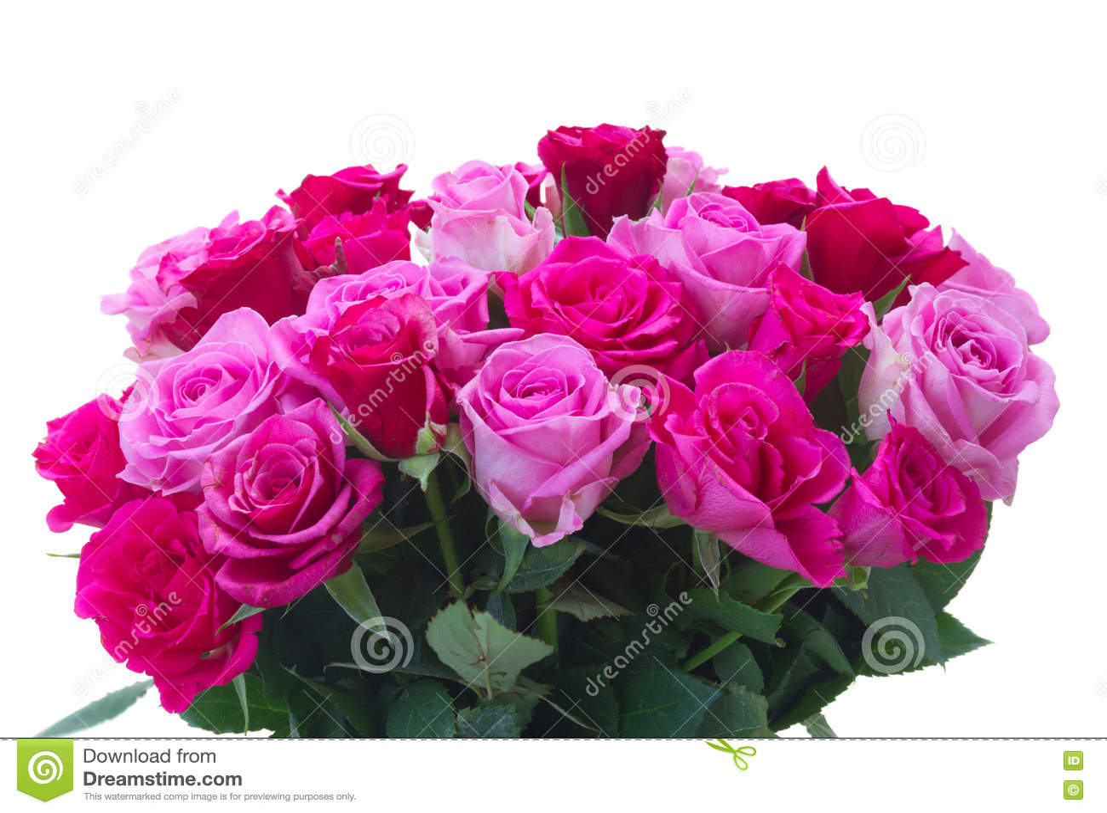 Bouquet des roses roses fraîches