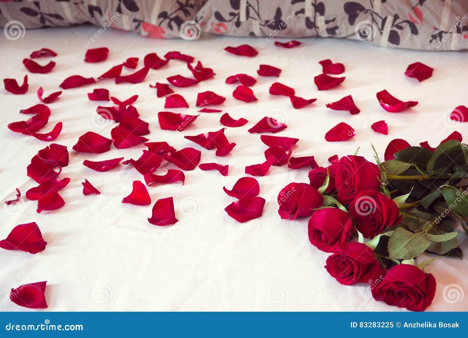bouquet des roses rouges et de ses p tales dispers s sur un lit image stock image du nature. Black Bedroom Furniture Sets. Home Design Ideas