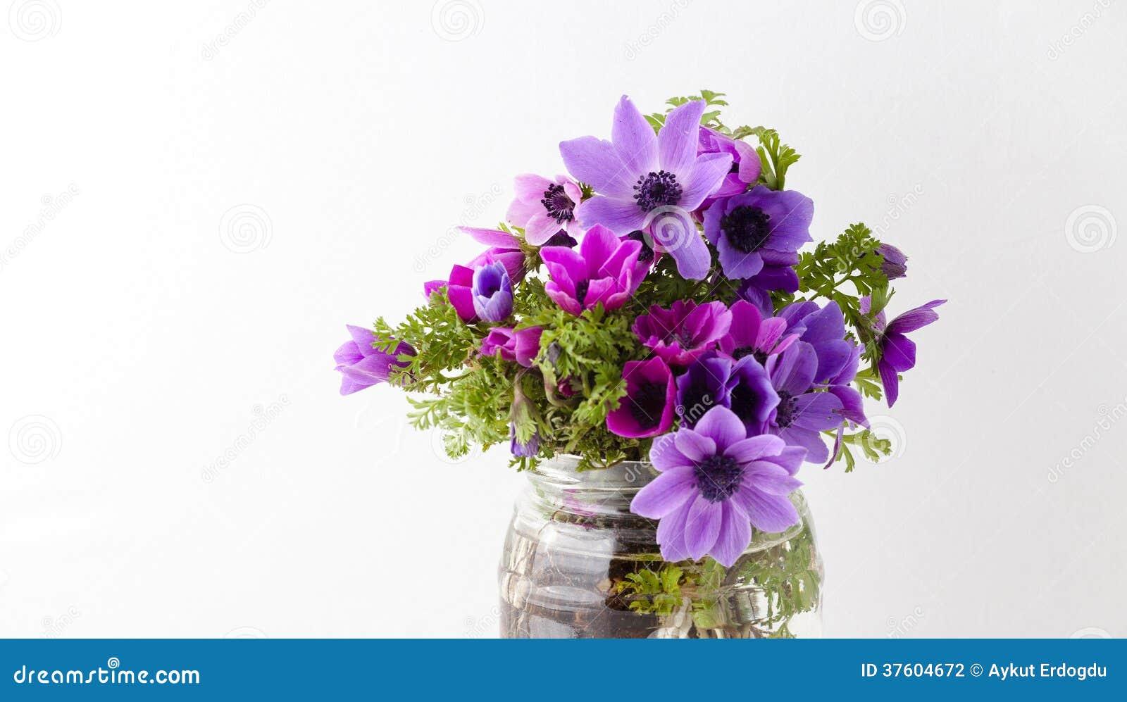 Bouquet Des Tulipes D An 233 Mone Photographie Stock Image