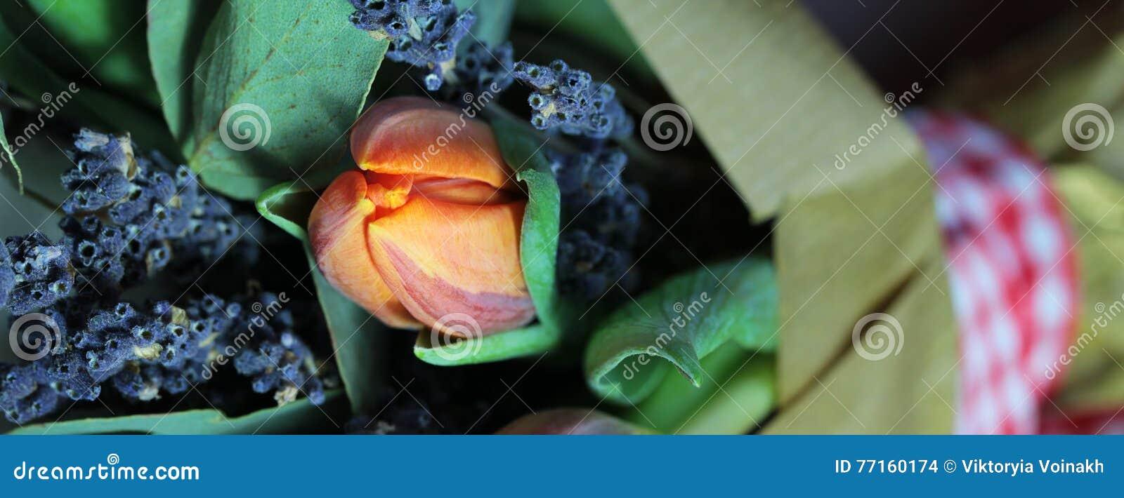 Bouquet des tulipes, eucalyptus, lavande