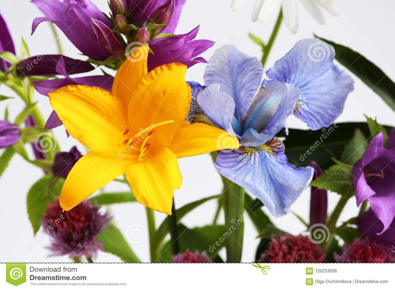 A Bouquet Of Different Wild Field And Garden Flowers Bell Lily