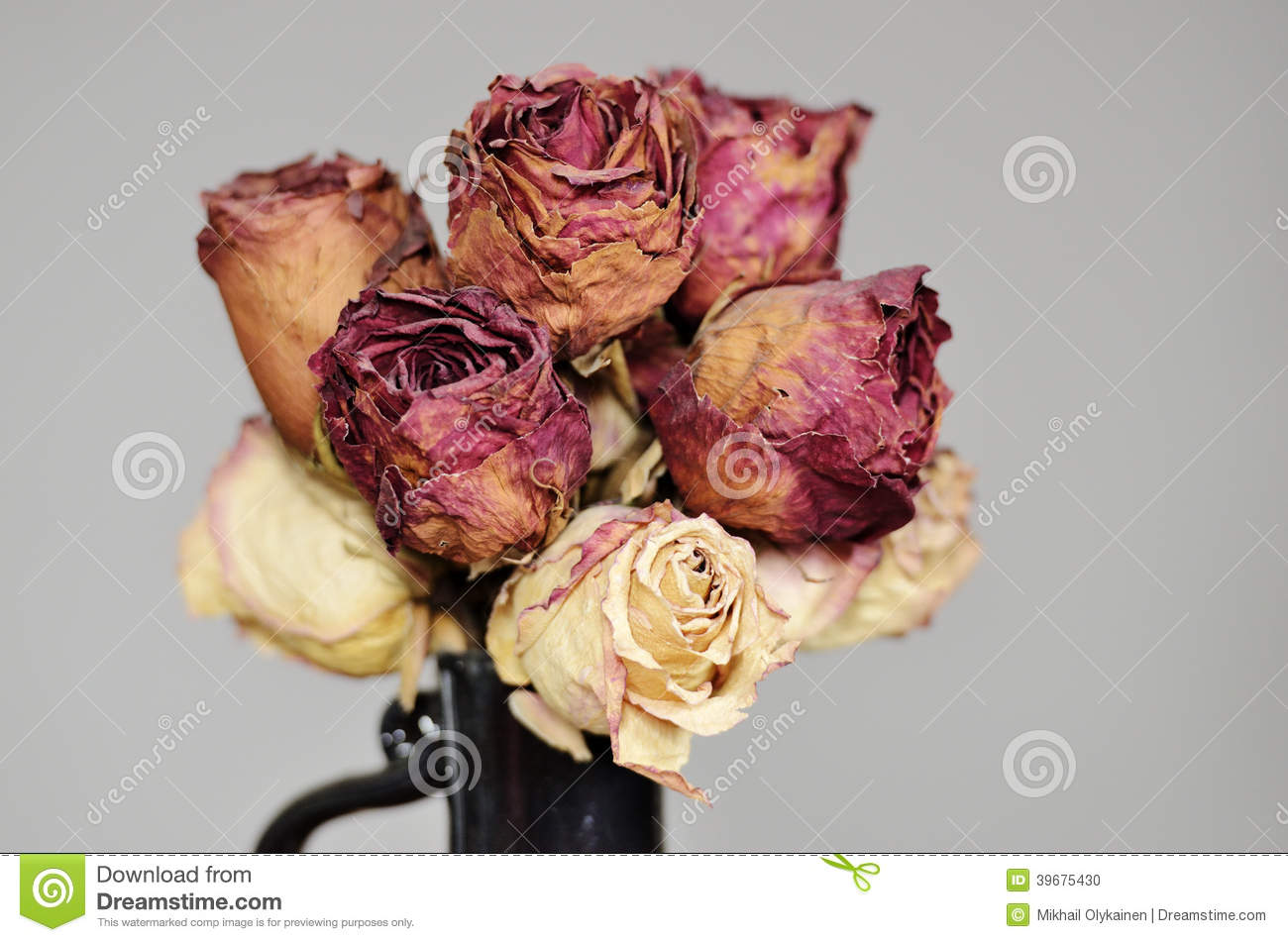 Bouquet Of Dried Roses In Ceramic Vase Stock Photo - Image of dead ...