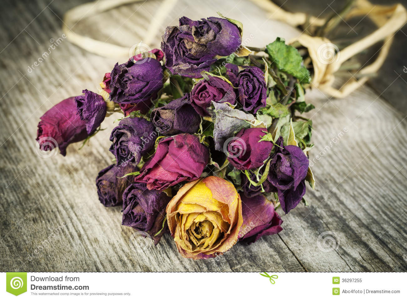 Bouquet of dried roses stock image. Image of dead, blank - 36297255
