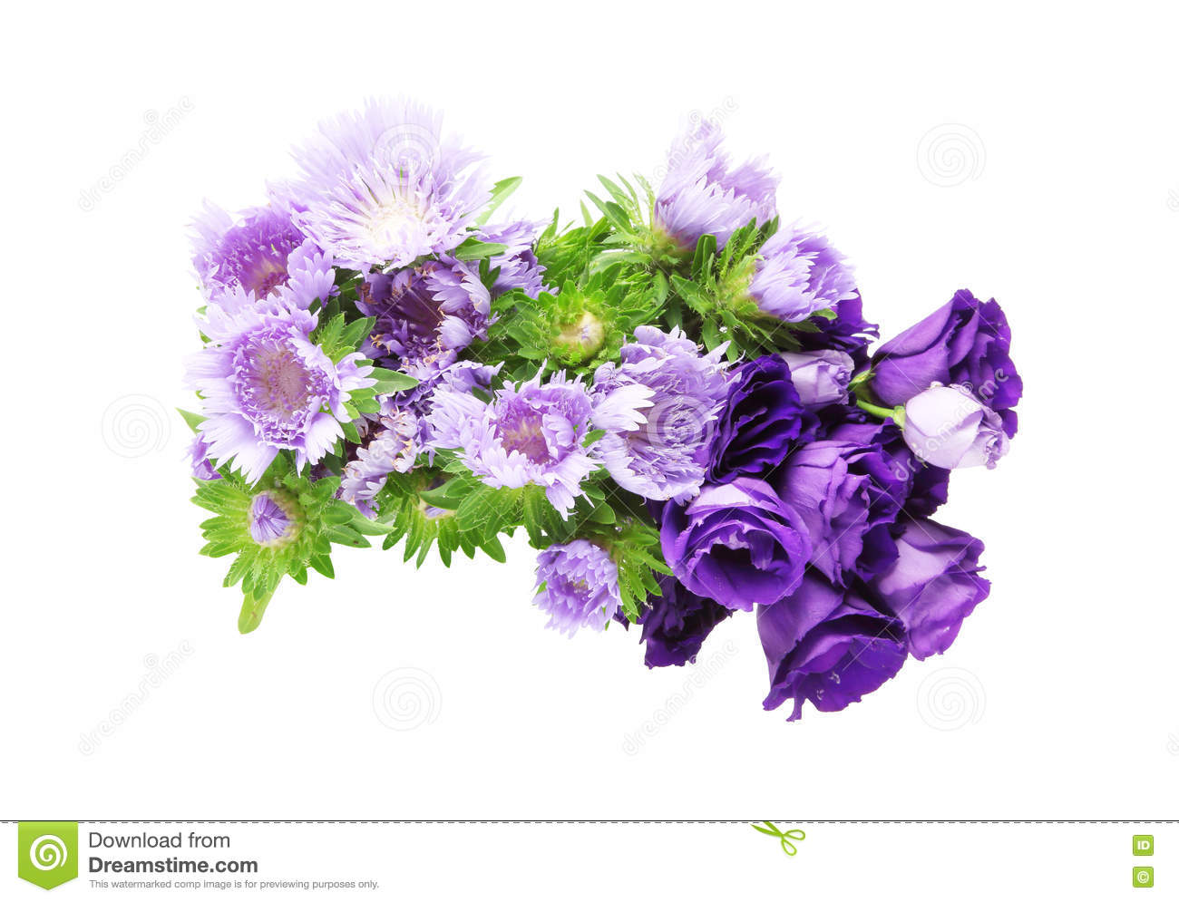 Bouquet Of Eustoma And Pincushion Flowers Stock Photo Image Of