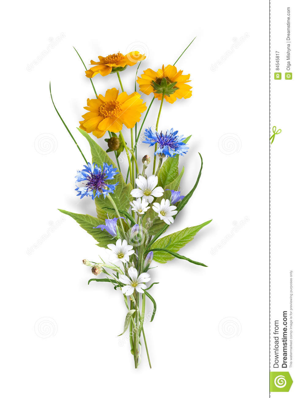Bouquet Of The Field Wild Flowers Stock Image Image Of