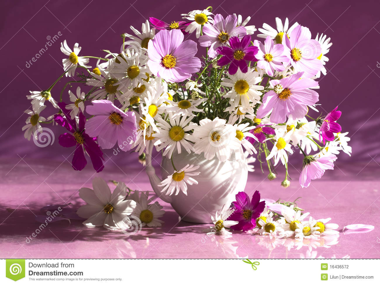Bouquet of flowers camomile stock photo image of grass cultural bouquet of flowers camomile izmirmasajfo
