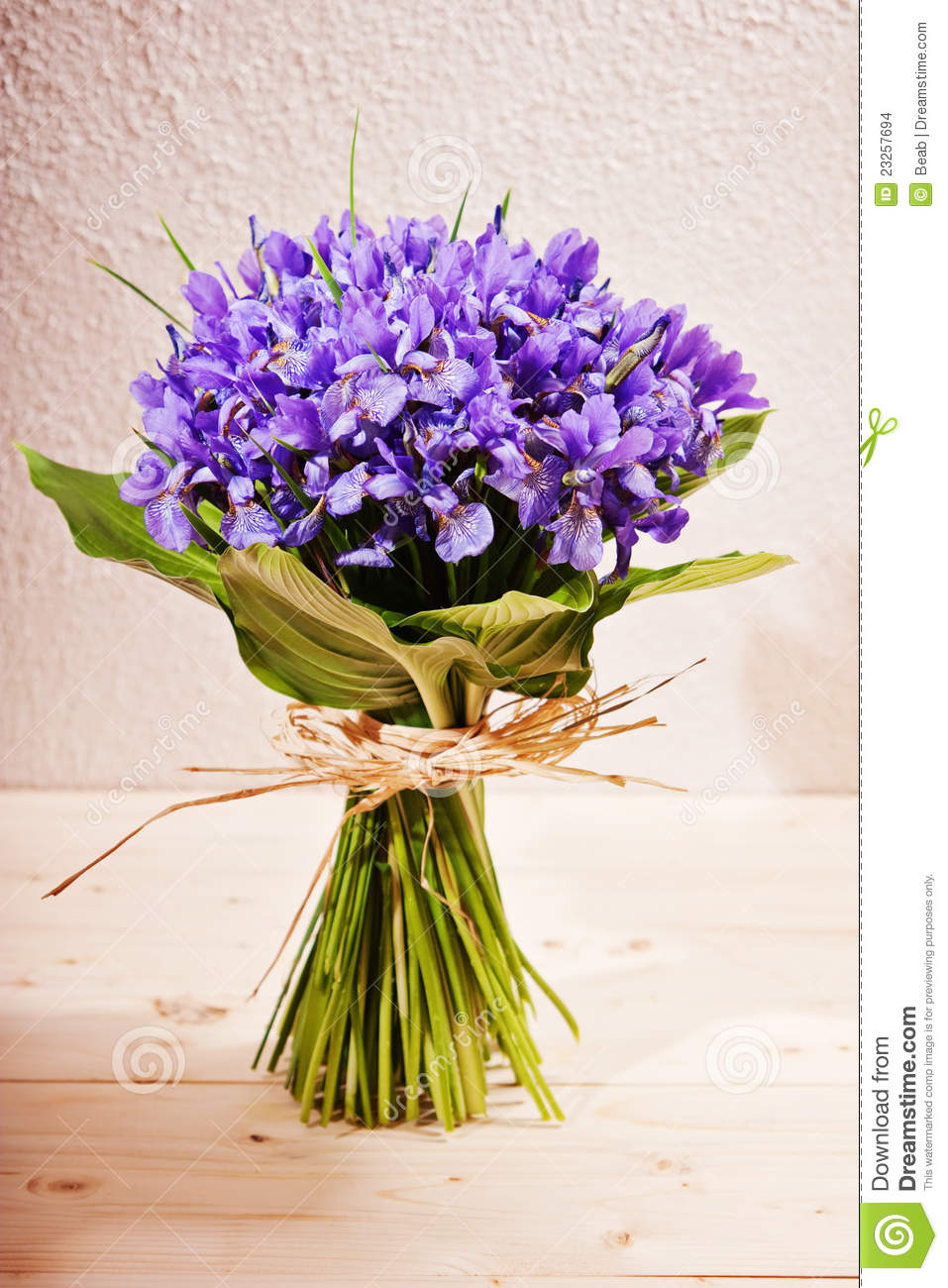 Gut gemocht Bouquet of flowers iris stock photo. Image of bouquet - 23257694 XD53