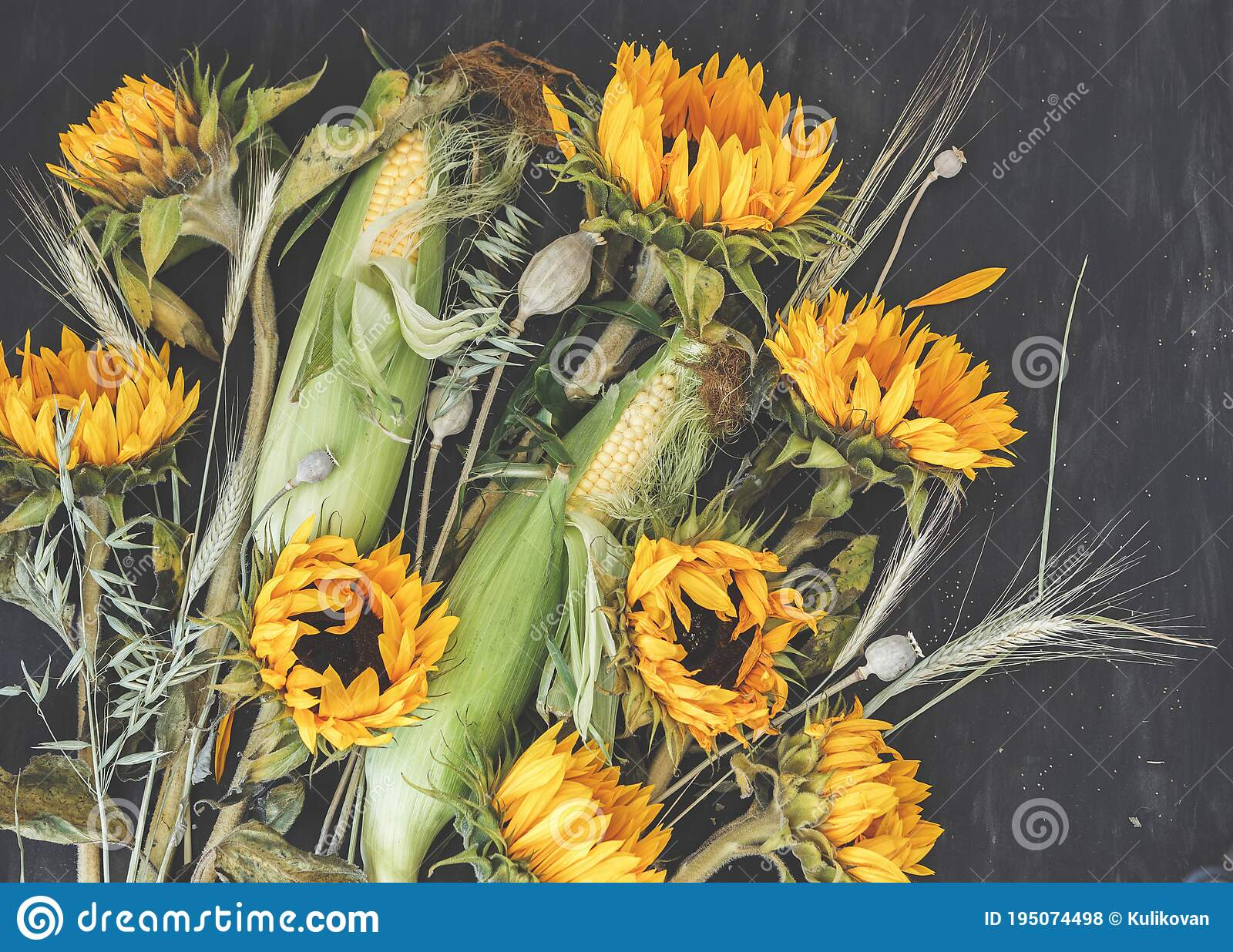 Bouquet Of Flowers And Vegetables Sunflowers Corn Poppies Boxes Wheat And Oats On Dark Background Autumn Harvest Stock Photo Image Of Flowers Botanical 195074498