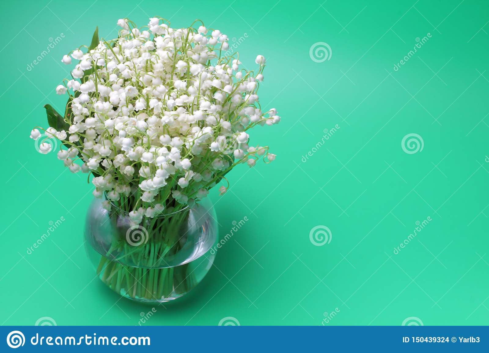 Bouquet of forest lilies Convallaria