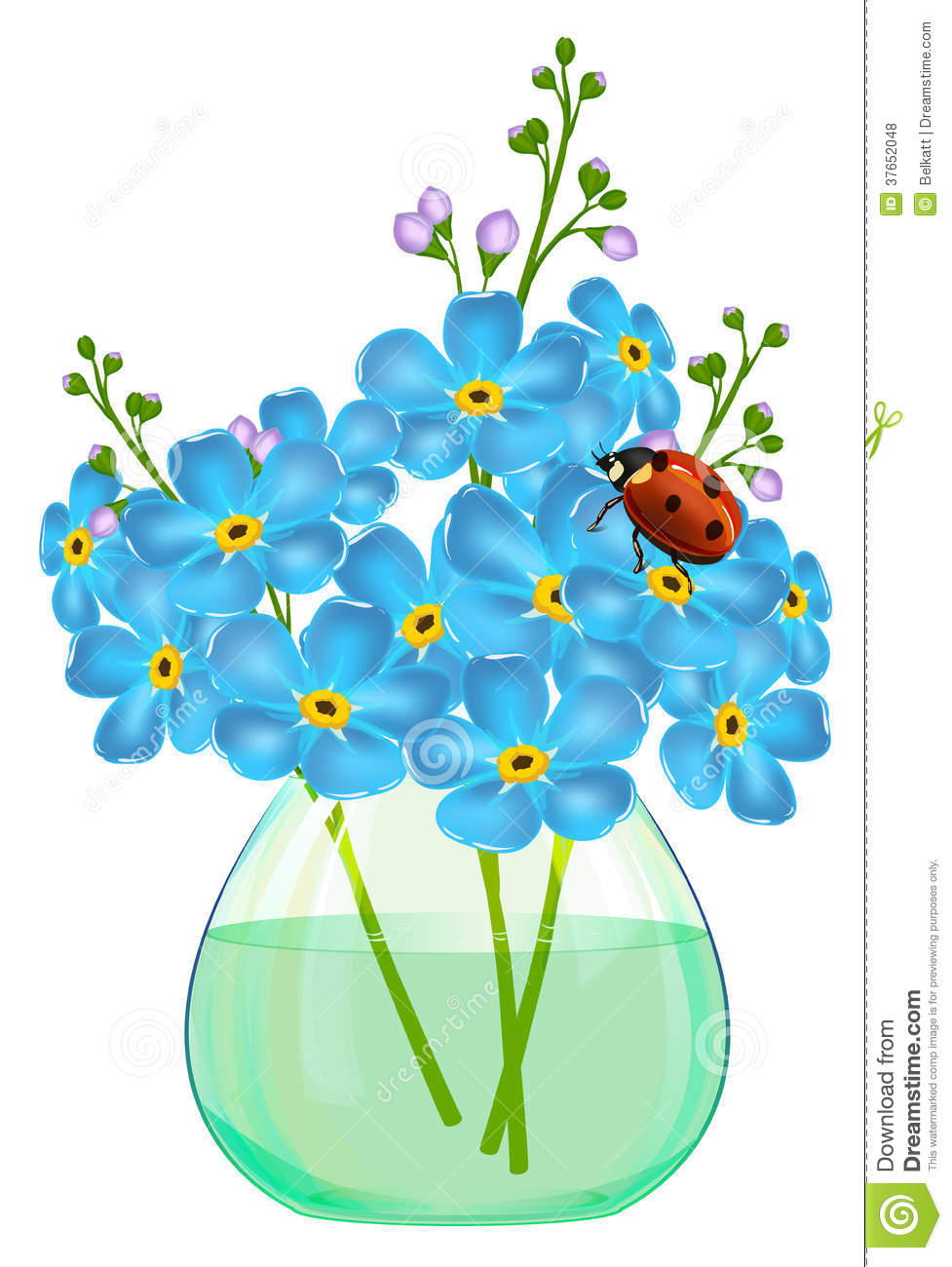 Bouquet Of Forget-me-not Flowers In A Glass Vase. Ladybird ...