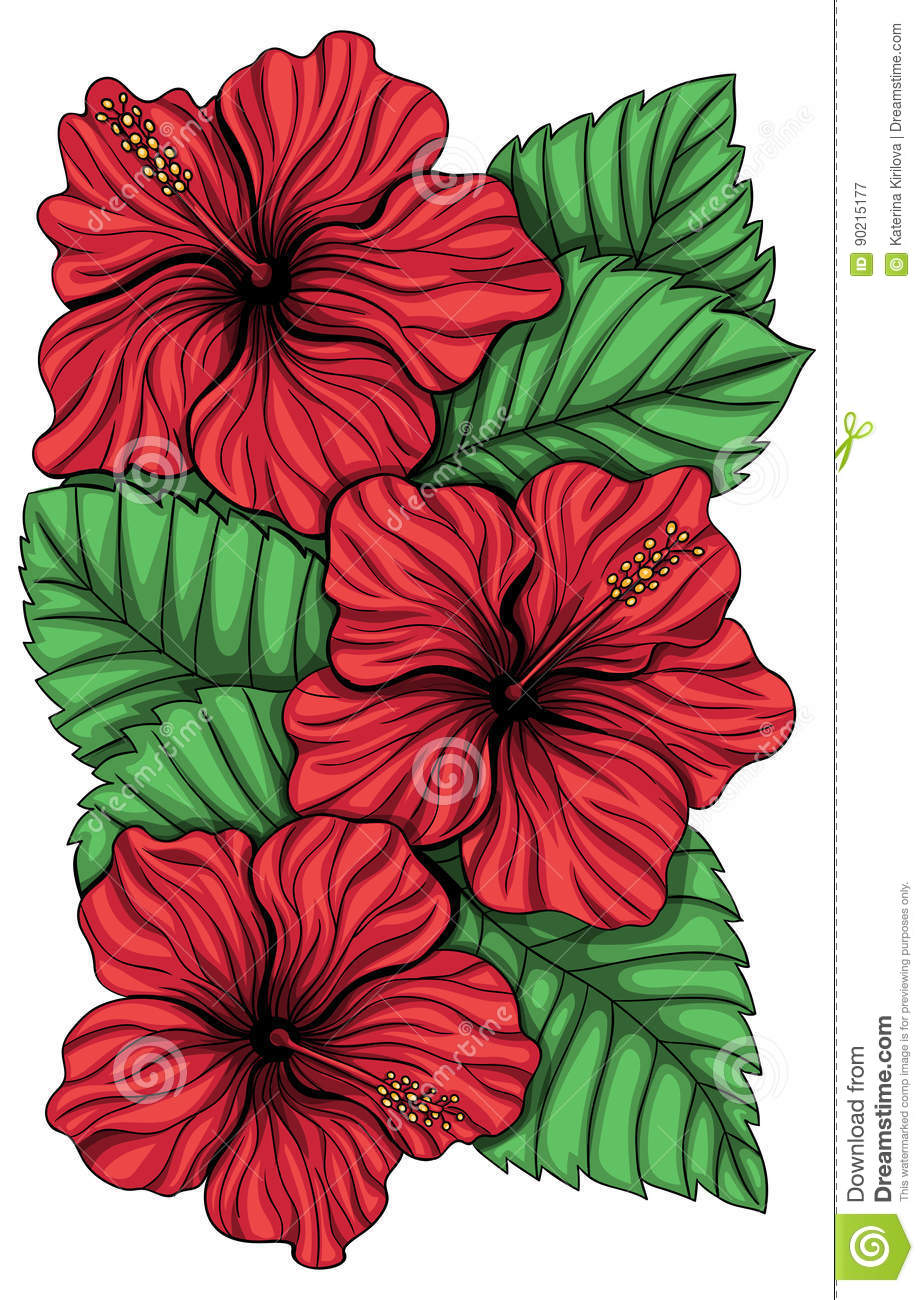 Bouquet Of Hibiscus Flower And Tropical Leaves Stock Vector ...