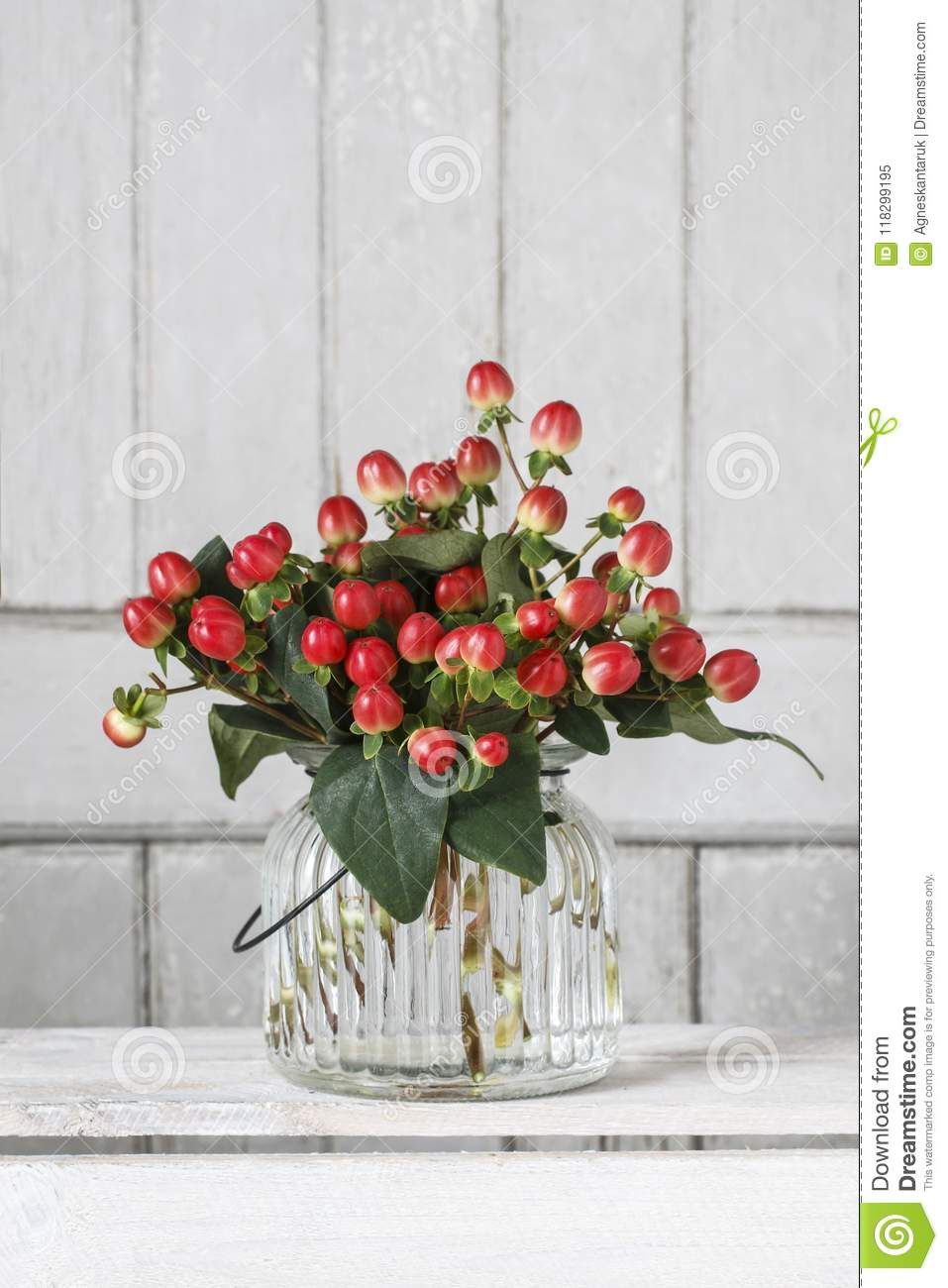 Bouquet Of Hypericum Plants Twigs With Red Berries Stock Image Image Of Mood Blank 118299195