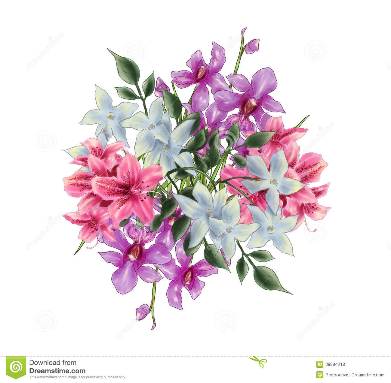 bouquet of flower illustration consist of Vanda Miss Joaquim orchid ...