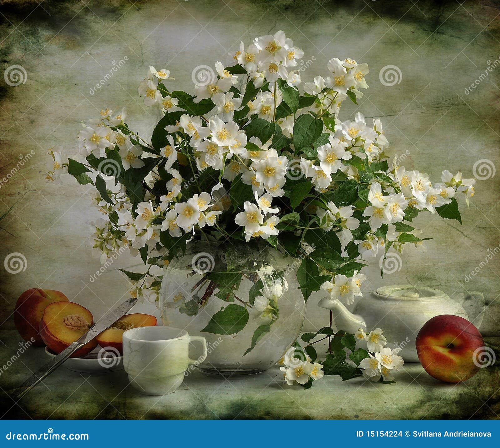 Bouquet of jasmin