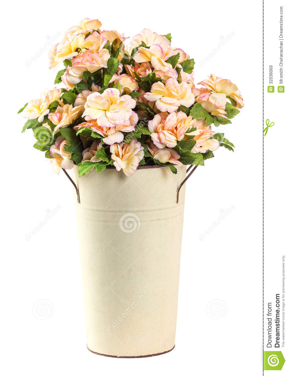 Bouquet of jasmine flower stock image image of gift 32036069 bouquet of jasmine flower izmirmasajfo Image collections
