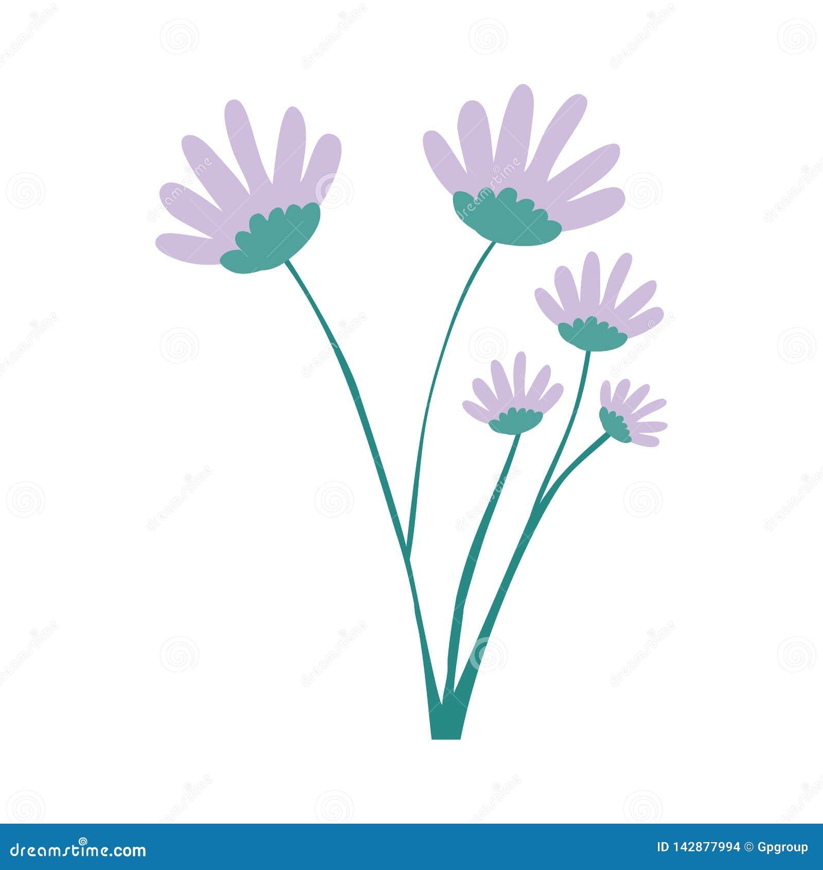 Bouquet Lilas De Fleur De Marguerite De Couleur De Dessin De