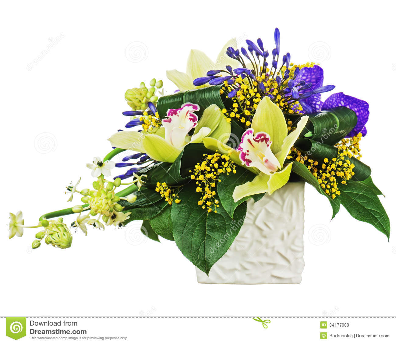 Top Bouquet From Orchids And Arabian Star Flower (Ornithogalum @GS_99