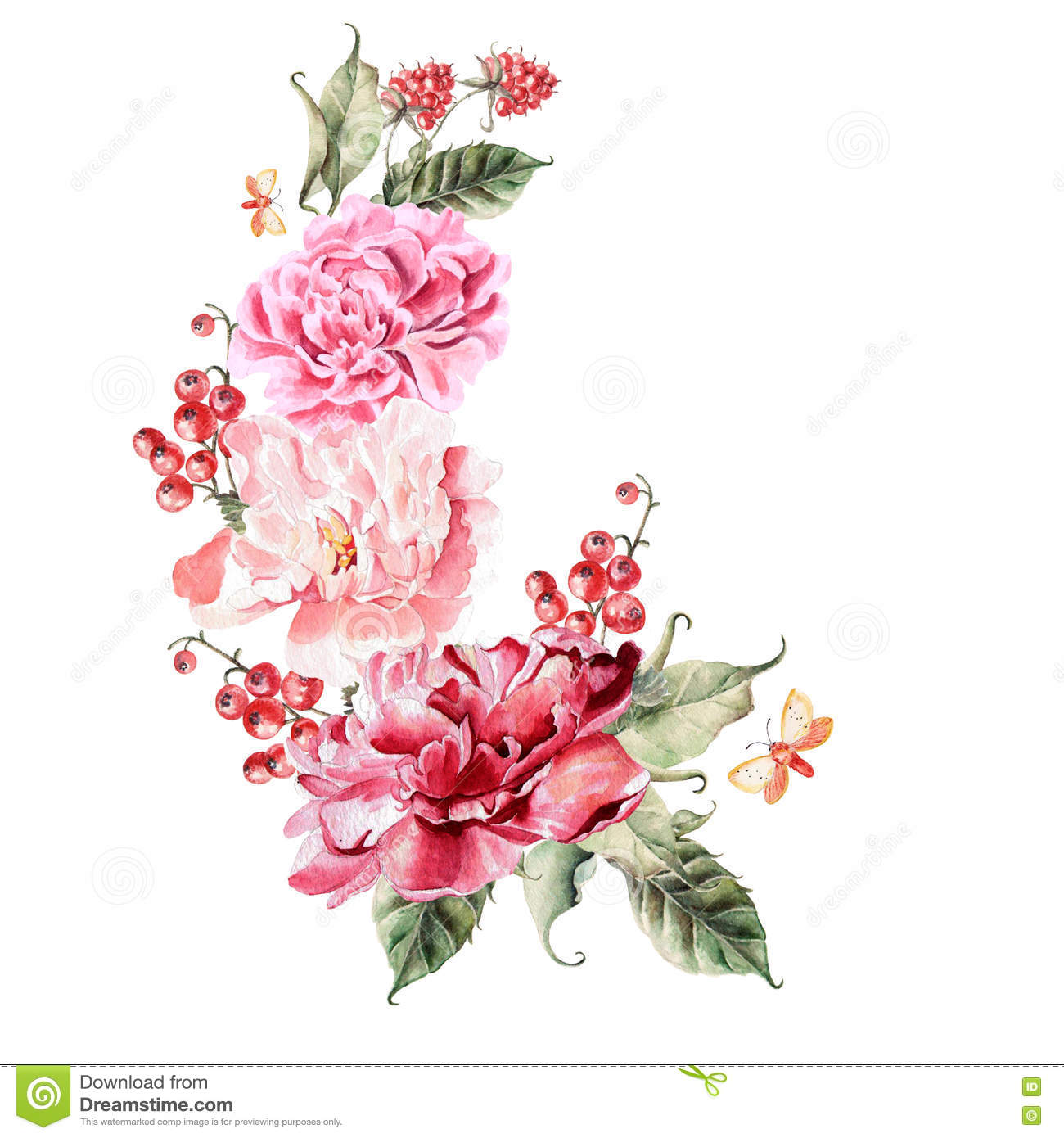 Bouquet Of Peony Flowers Berries Currants And Raspberries