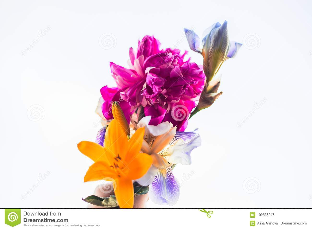 Bouquet And Peony Stock Image Image Of Bright Bouquet 102886347