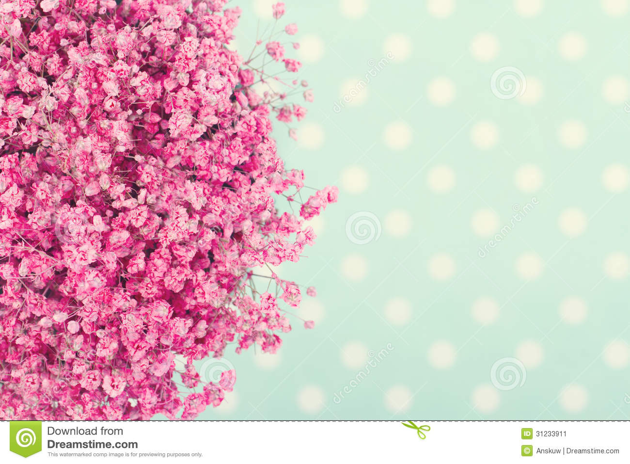 Bouquet of pink baby's flowers on turquoise dotted background with ...