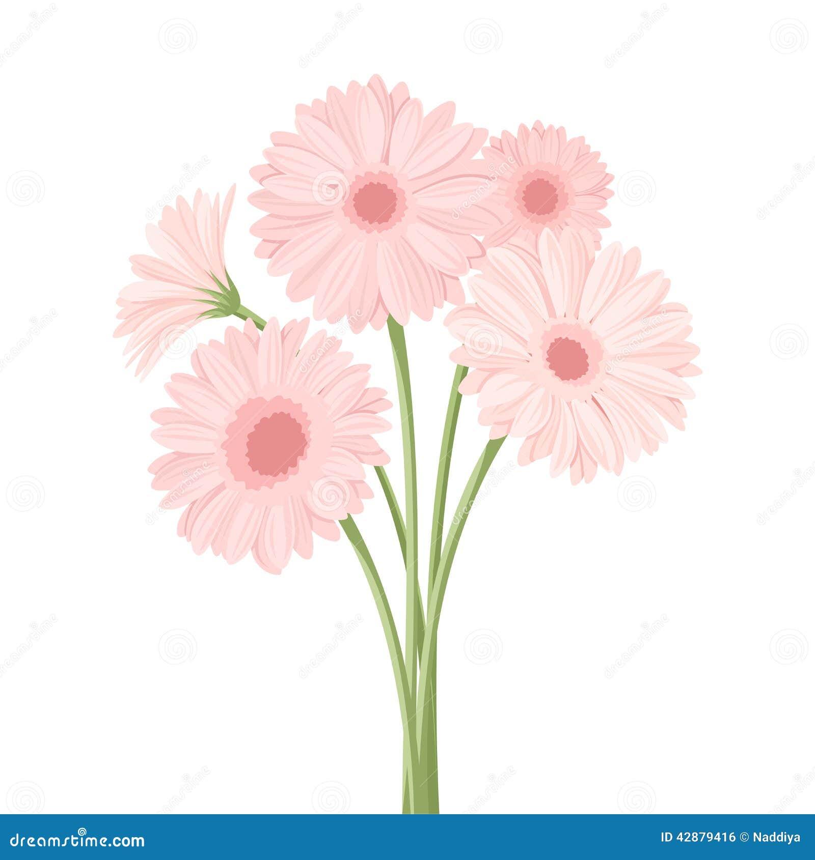 Bouquet Of Pink Gerbera Flowers. Vector Illustration ...