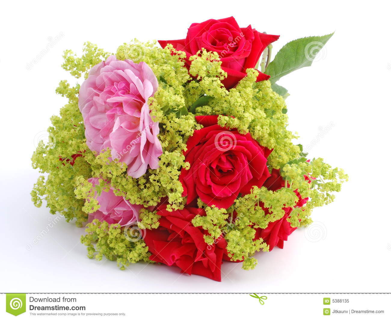 Bouquet Of Pink And Red Roses Royalty Free Stock Photo ...
