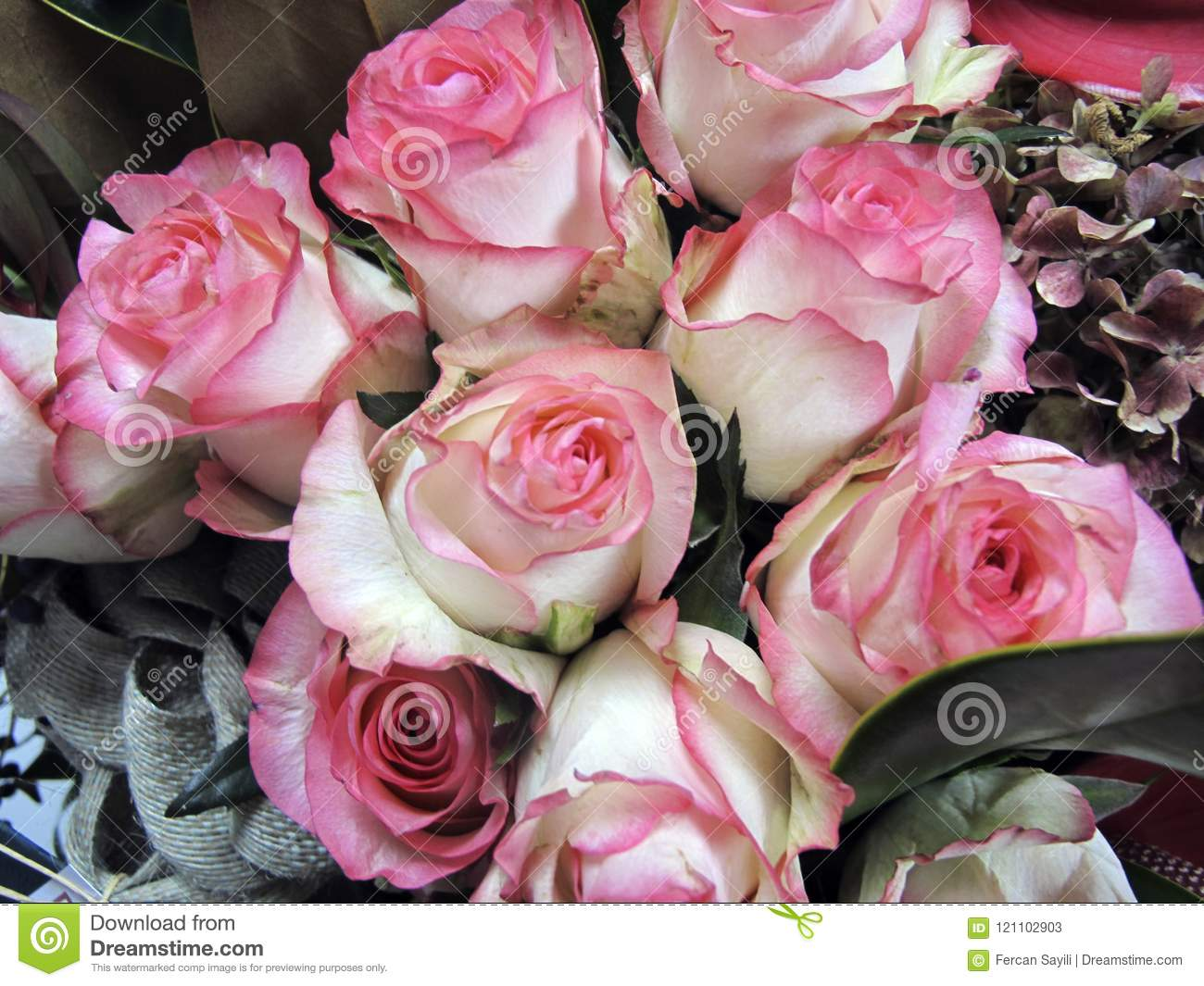 A Bouquet Of Pink Roses In A Bunch Stock Image Image Of Closeup