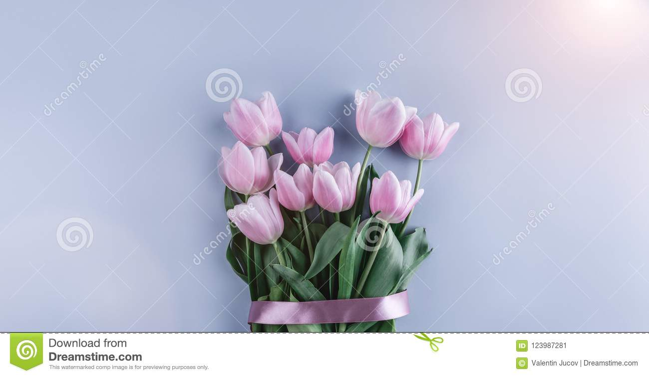 Bouquet Of Pink Tulips Flowers On Blue Background Waiting For