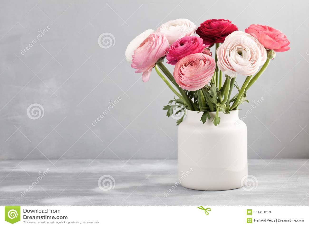 Bouquet Of Pink And White Ranunculus Flowers Stock Image Image Of